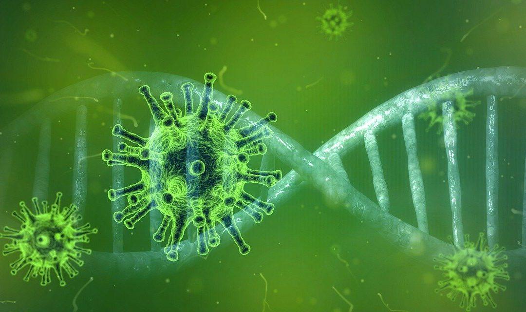 ¡Alerta, coronavirus!: España y ¿cómo podemos evitarlo y ayudar?