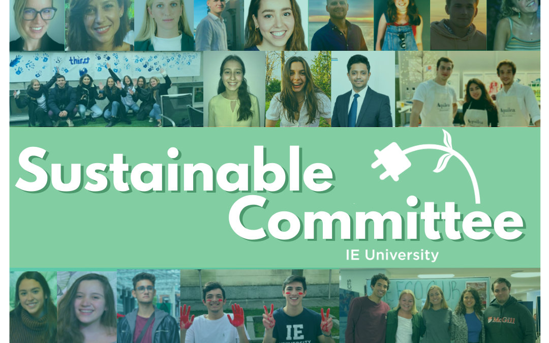 Sustainable Committee | Meet the Clubs